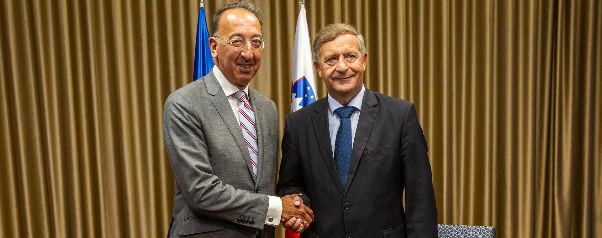 EDA Chief Executive in Slovenia for talks on EU defence cooperation